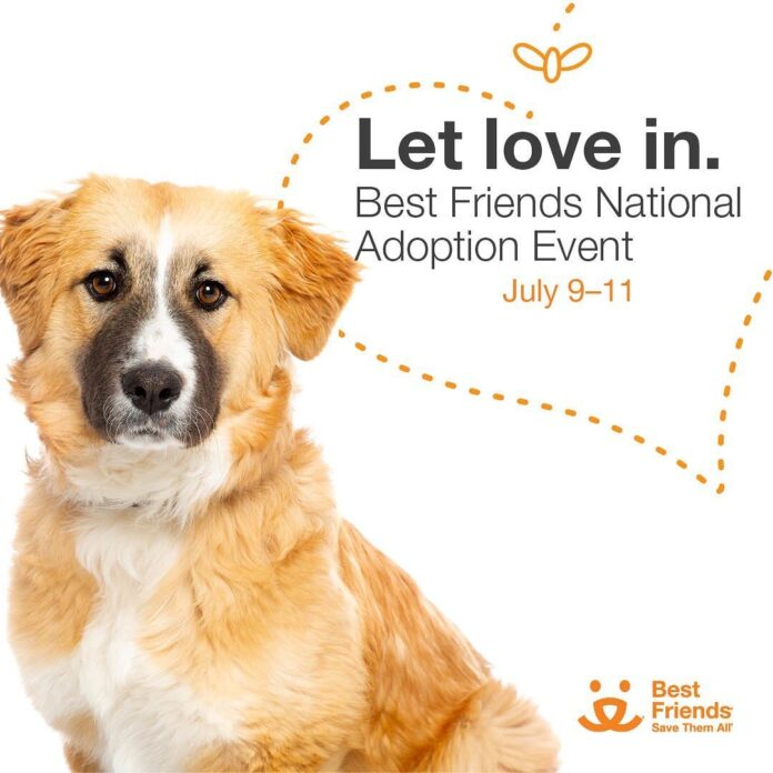 Let Love In: Best Friends National Adoption Event. July 9-11, 2021.