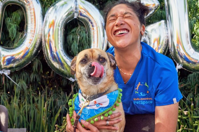 What's DOGust? It's the universal birthday of shelter dogs. Celebrate DOGust at Wallis Annenberg PetSpace on Saturday, August 28.