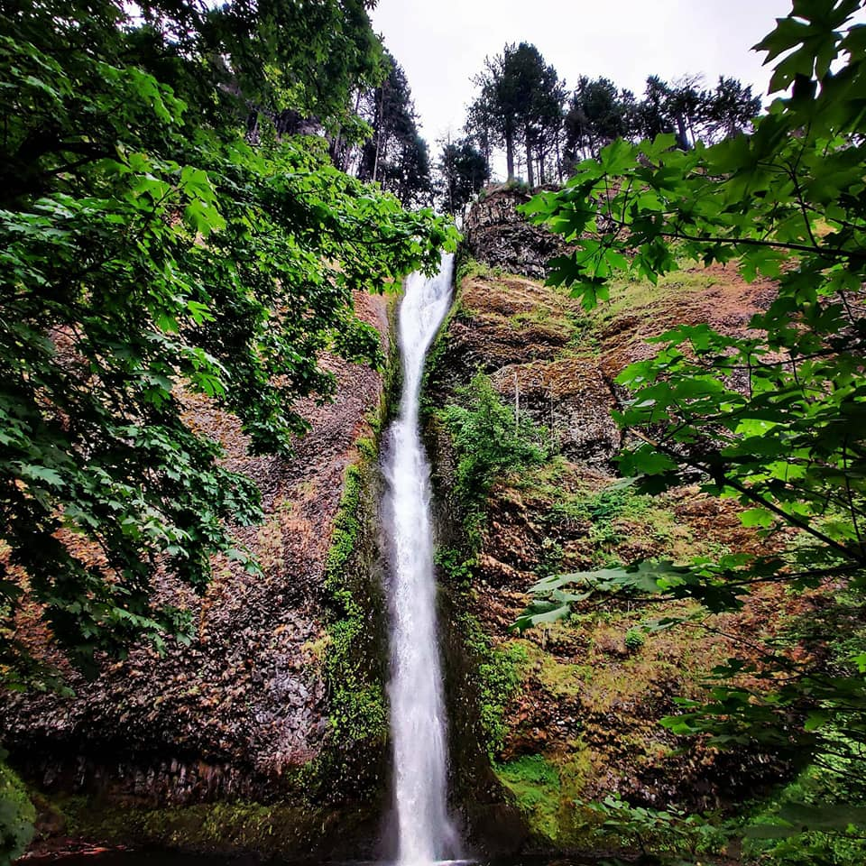 Hiking and Wine Tasting in the Columbia River Gorge